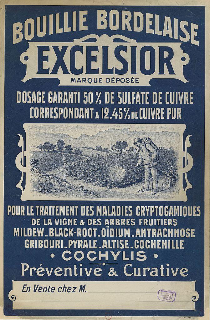 traitement vigne bouillie bordelaise